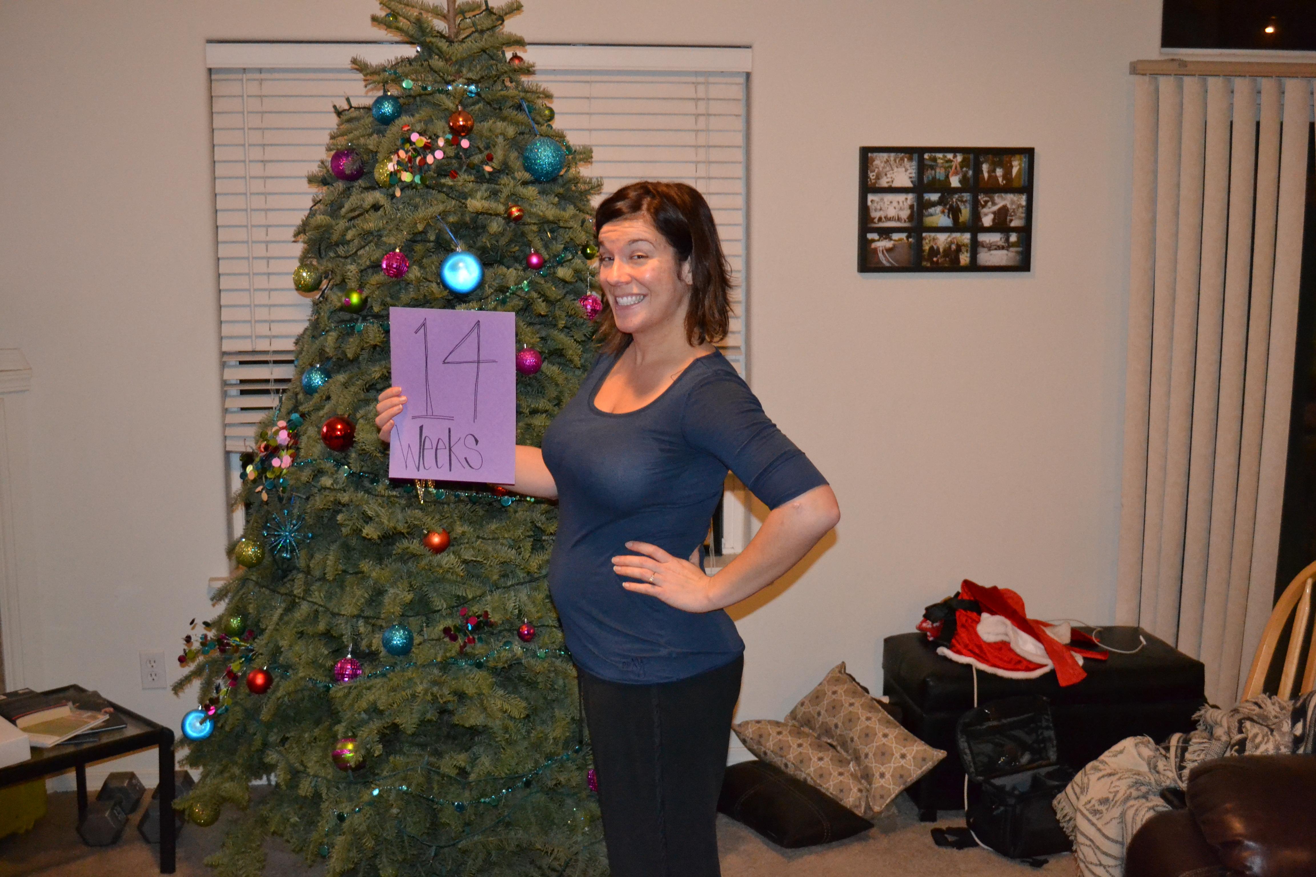 14 Weeks Pregnant Bump Baby – Home Exsplore