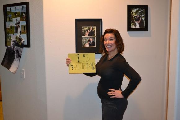 15 week belly
