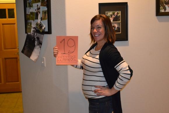 19 week belly